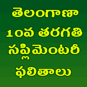 TG/telangana state SSC supplementary results 2019