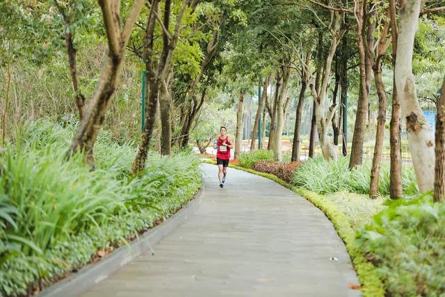 7km đường dạo bộ sinh thái tại Ciputra Hanoi
