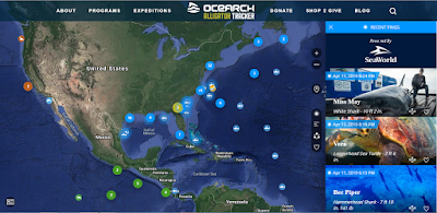 OCEARCH Shark Tracker