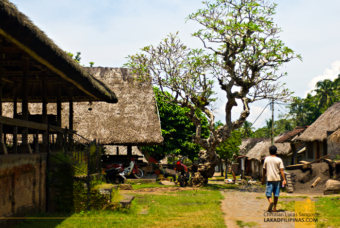 Bali Traditional Villages Tenganan