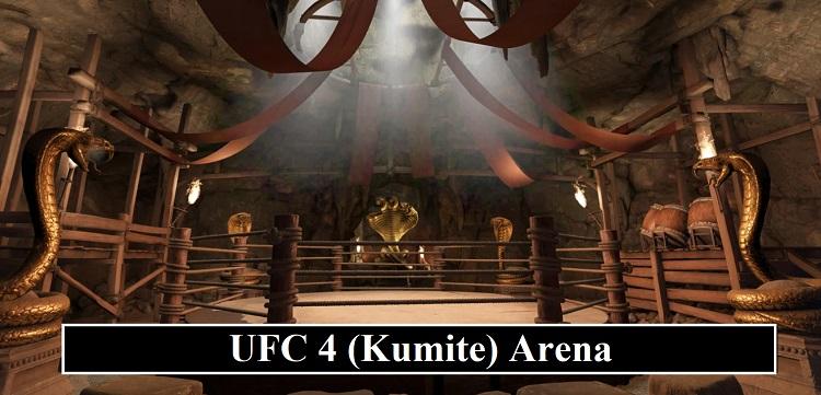 UFC 4 Kumite Mode