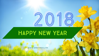 2018 Happy new year Greetings with Sun flowers