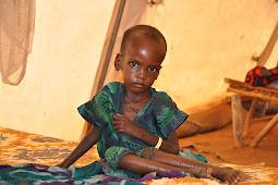 2.1 Million Kenyans Face Hunger Due to Drought, Uhuru Kenyatta Declared a National Disaster