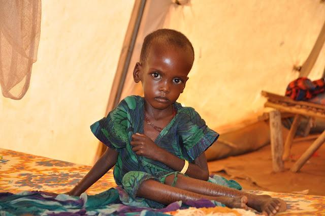 2.1 Million Kenyans Face Hunger Due to Drought, Uhuru Kenyatta Declared a National Disaster.lelemuku.com.jpg