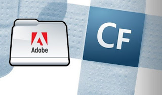 Adobe released three patches  one for an important flaw (CVE-2019-8072)