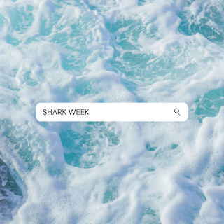 Overview of the ocean with a search engine box laid over it and the words SHARK WEEK inside the search box.
