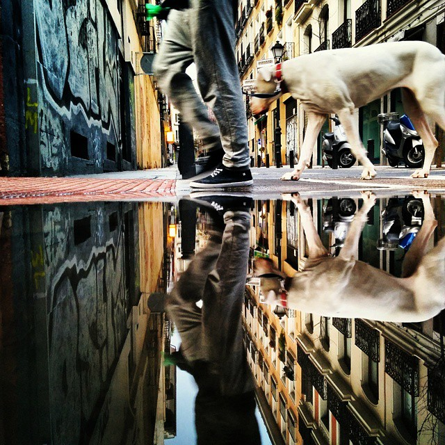 08-Street-Art-Guido-Gutiérrez-Ruiz-The-World-Reflected-in-Photographs-of-daily-Life-www-designstack-co