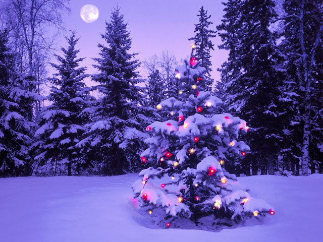 Merry Christmas Tree Wallpaper 2015