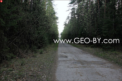 Бетонная дорога из Новоколосово в бывший 25 арсенал