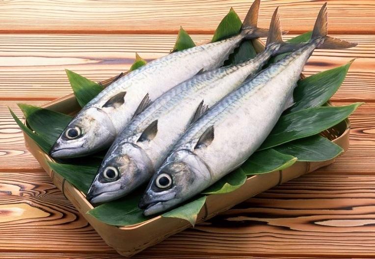Bisnis Ikan Laut Beku
