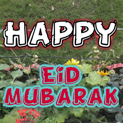Eid Wishes pics[ with Quotes]