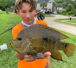 Liam S, Year of the Rio, YOTRio2021, Rio Grande Cichlid, Rio Grande Cichlid on the Fly, Fly Fishing for Rio Grande Cichlid, Fly Fishing Texas, Texas Fly Fishing, Texas Freshwater Fly Fishing, TFFF