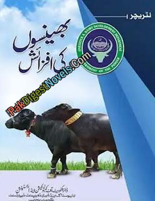 Buffalo Farming And Production (Complete Pdf Urdu Book)