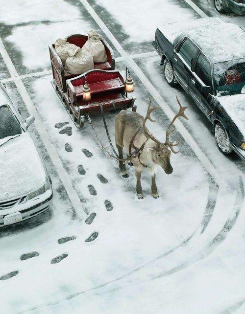 Buon Natale 4x4.Buone Feste 2013 2014 Questo Anno Babbo Natale Non E Andato In