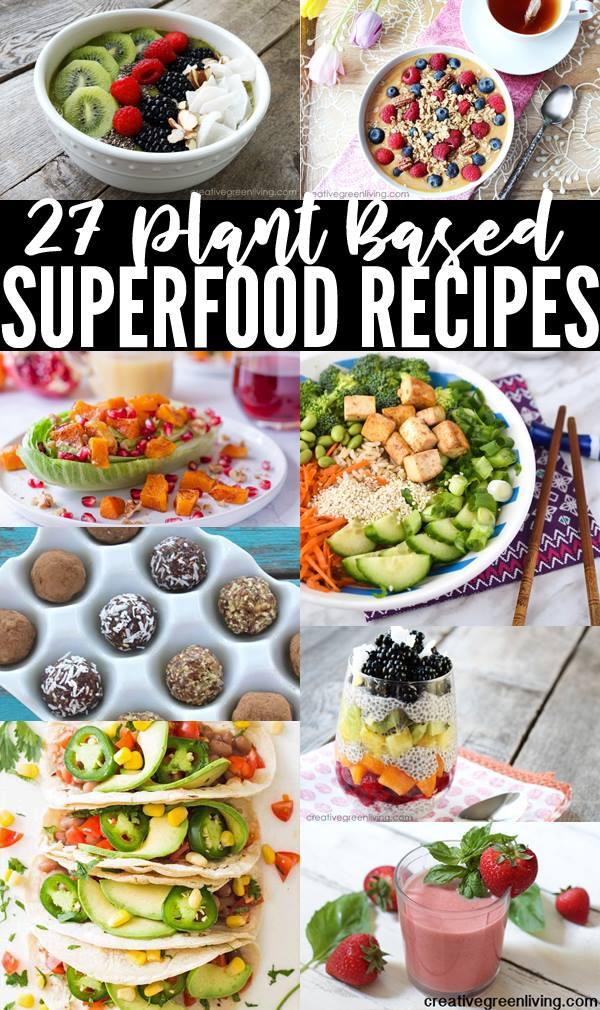 plant based vegan recipes