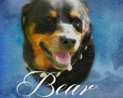 Digitally painted pet portrait of a rottweiler