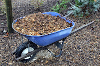 Mix fertilizer in wheelbarrow
