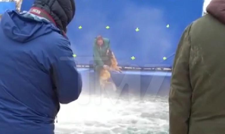 A Dog S Purpose German Shepherd Water Tank