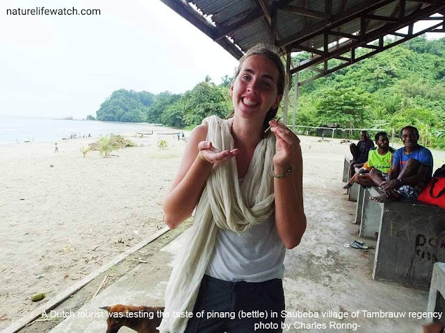 Wisata Bahari di Pantura Papua Barat