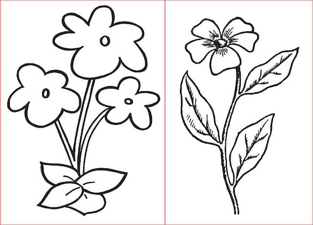 gambar-sketsa-bunga-sederhana