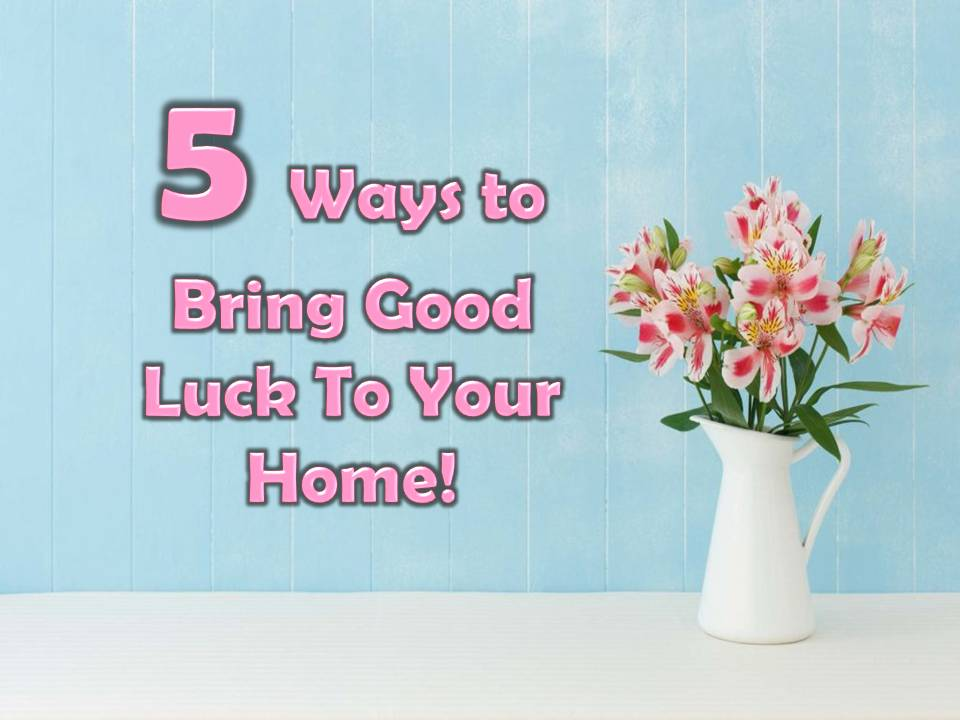 Things That Bring Good Luck 5 ways to bring good luck to your home