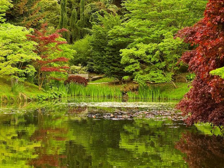 Todo informacion paisajes bellos del mundo for Imagenes de jardines exoticos