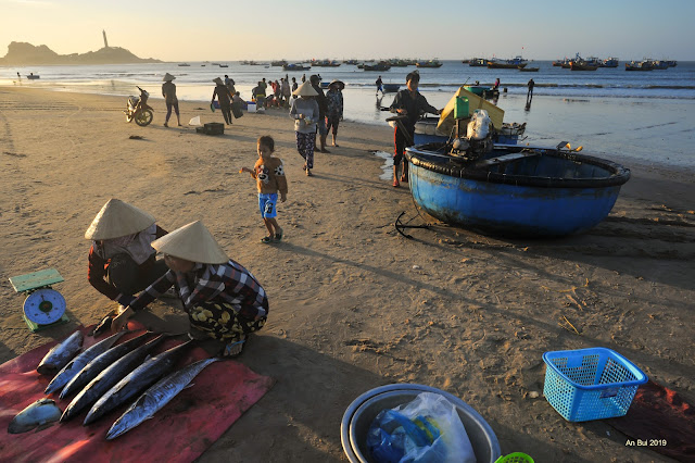 Bình minh cảng cá Kê Gà