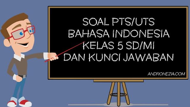 Soal PTS/UTS Bahasa Indonesia Kelas 5 Semester 1