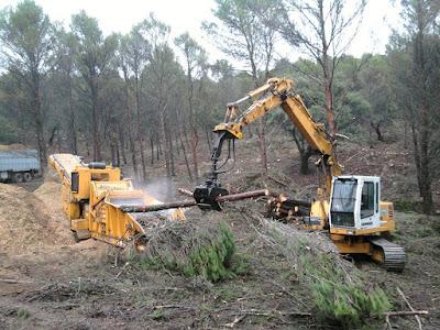 Abandono de biomasa