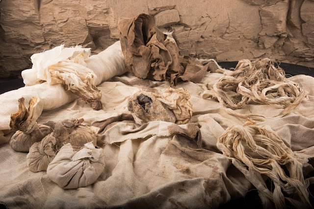 Embalming materials for Middle Kingdom High Vizier rediscovered on Luxor's west bank