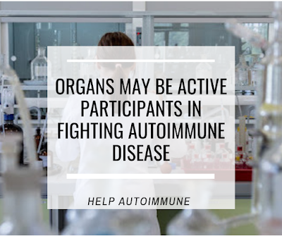 Organs may be Active Participants in Fighting Autoimmune Disease