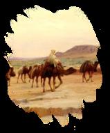 Peygamberimiz Hilfu'l Füdul Cemiyetinde