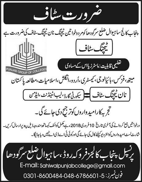 Jobs In Punjab Group Of Colleges Sargodha Jan 2018