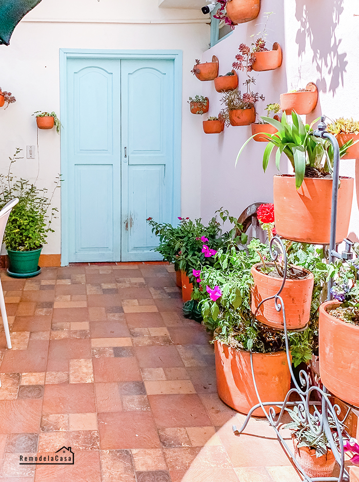 Courtyard with wall of terracotta planters and blue door