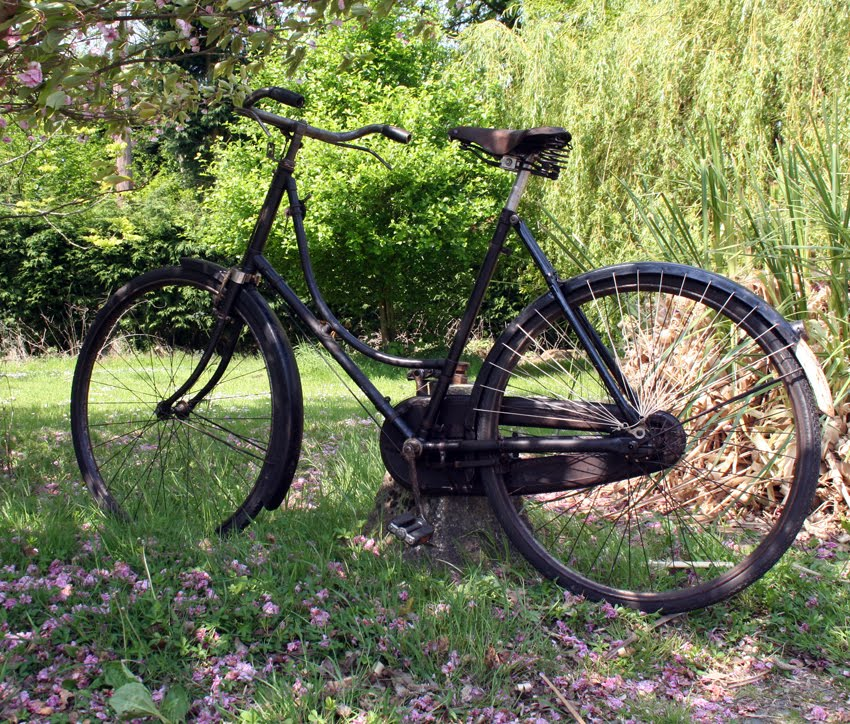 My Antique Bicycle Collection Popular Ladies Hercules 1925