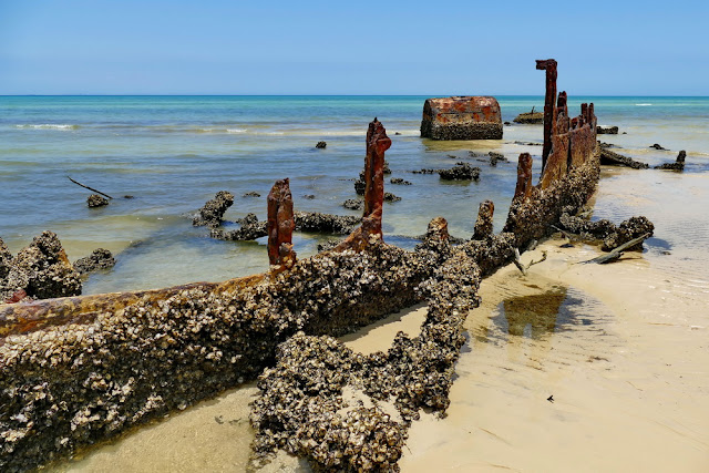 Normanby Schiff Wrack Wreck zerfallen muscheln muschelbesetzt Moreton Island Gerippe Kessel Dampfschiff