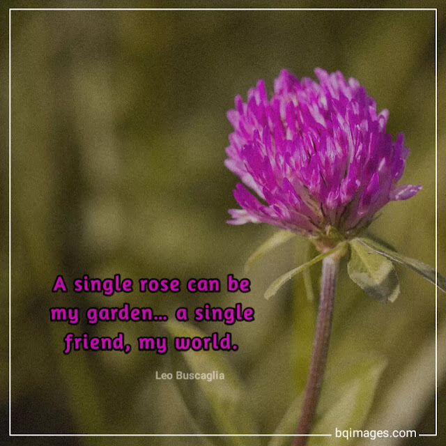 meaningful friendship quotes