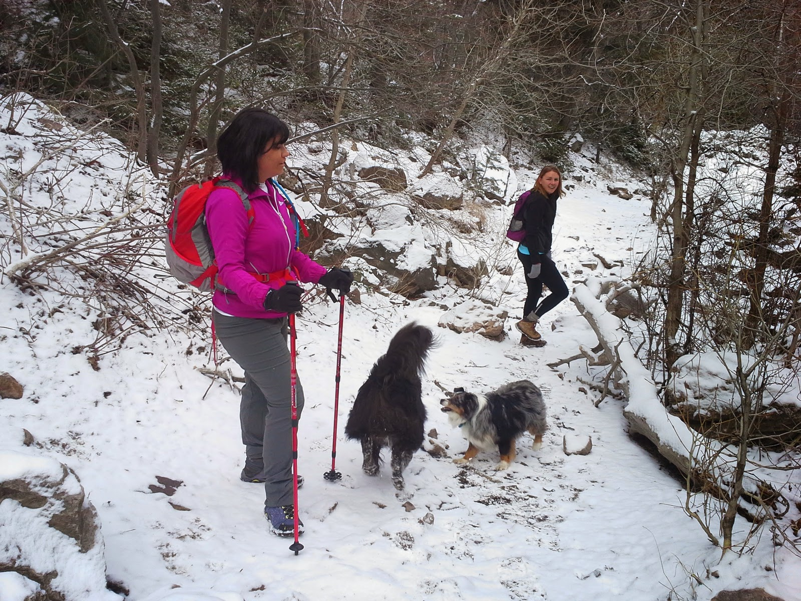 wasatch front utah hiking trails