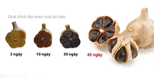 may-lam-toi-den-gia-inh-sunca-loai-45-kg