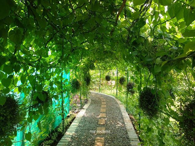 terowongan tanaman