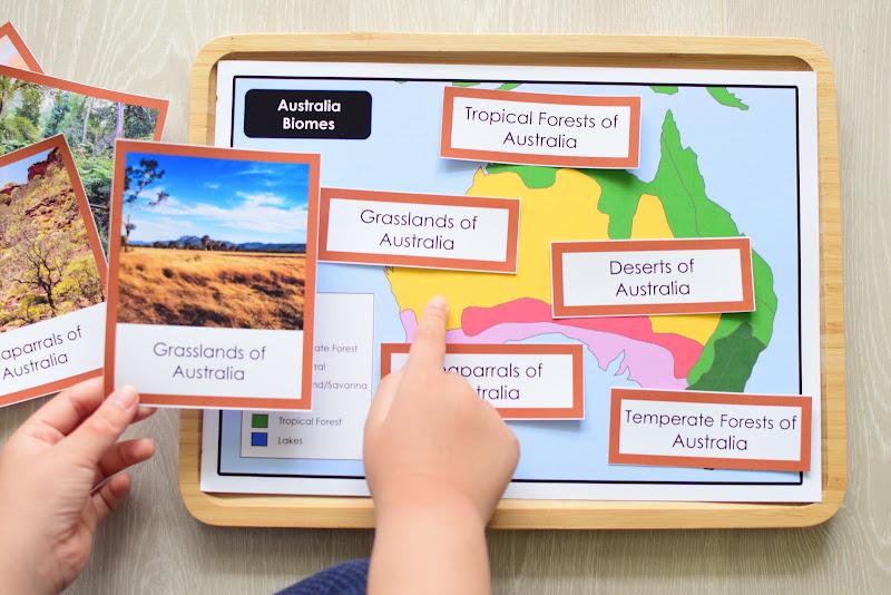 Oceania CONTINENT Study: AUSTRALIA BIOMES MAP
