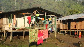 Procuraduría logró amparo de derechos fundamentales de 31 niños y niñas Embera Katíos del Chocó