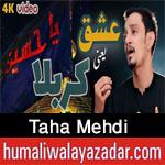 https://www.humaliwalayazadar.com/2016/06/syed-taha-mehdi-nohay-2013-to-2017.html