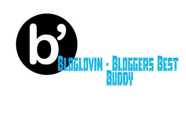 Bloglovin - Bloggers Best Buddy