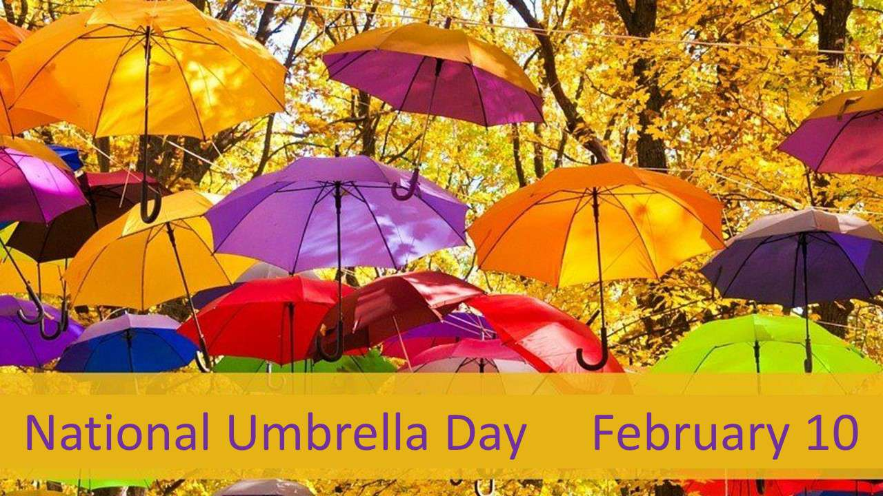 National Umbrella Day Wishes Lovely Pics