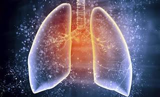 limpieza de pulmones naturalmente