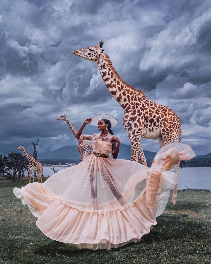 Miss Universe Kenya, Stacy Michuki's Stunning Safari Photoshoot Will Wow You!