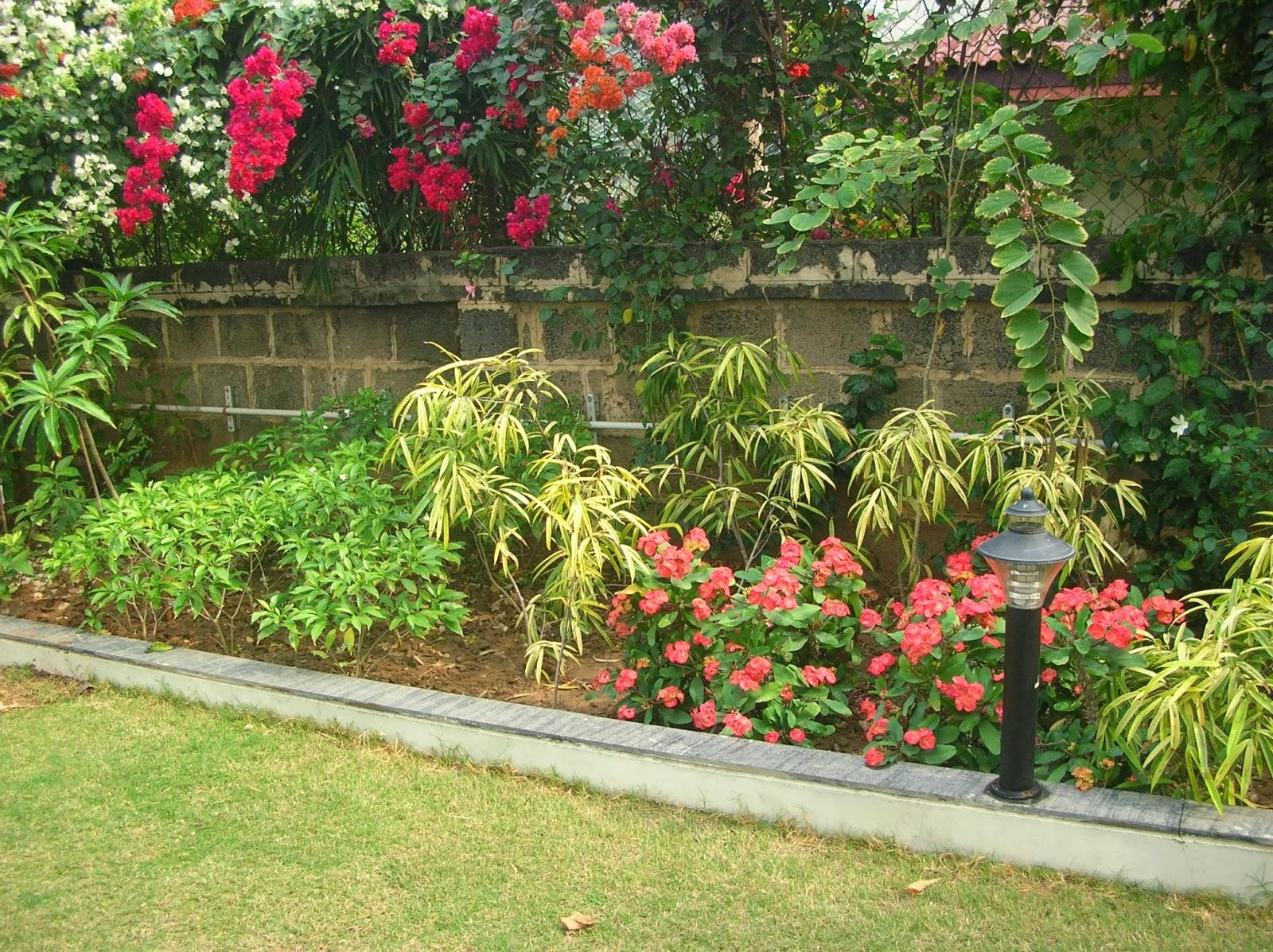 garden designing work ahmedabad