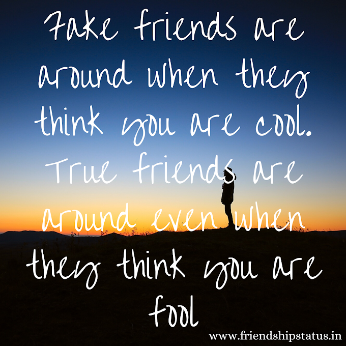 Best 20 Fake Friends Quotes & Fake People Saying Images
