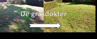 geel gras herstellen